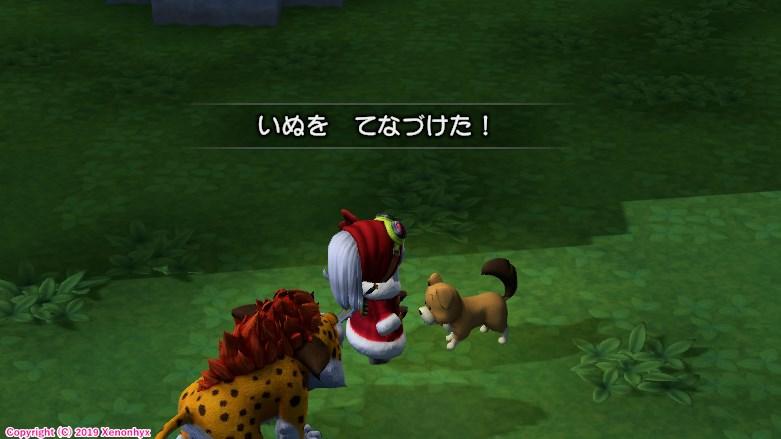 ドラゴンクエストビルダーズ2 初期犬